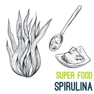 spiruline super aliment